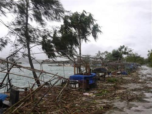 919Vanuatu Cyclone Pam